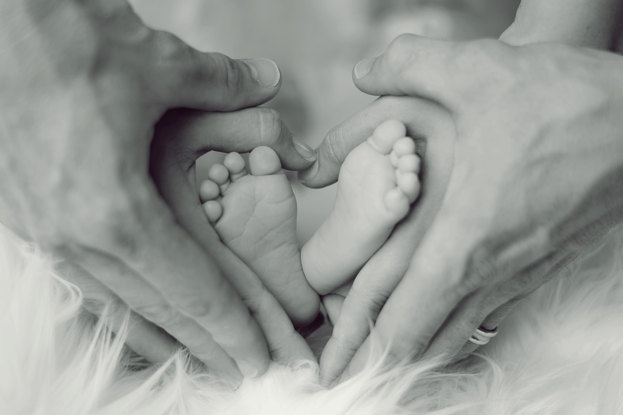 baby feet and parents hands in photoshoot